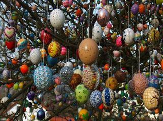 Eggtree3